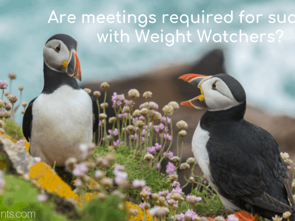 Online vs In Person Meetings with Weight Watchers