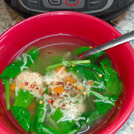 instant pot turkey meatball soup