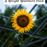 never give up: a weight watchers poem by kevin smiley