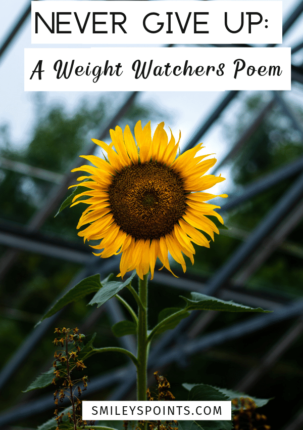 Never Give Up: A Weight Watchers Poem