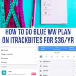 ww blue plan itrackbites