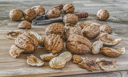 A bunch of walnuts in their shells on a wooden table. There's a nut cracker in the background.