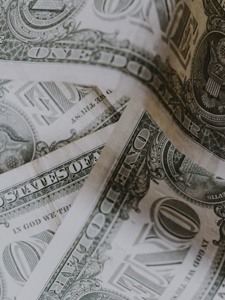 Subscription Cost. zoomed in picute of dollar bills