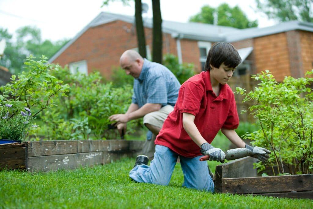 garden together. older man and younger boy gardening together